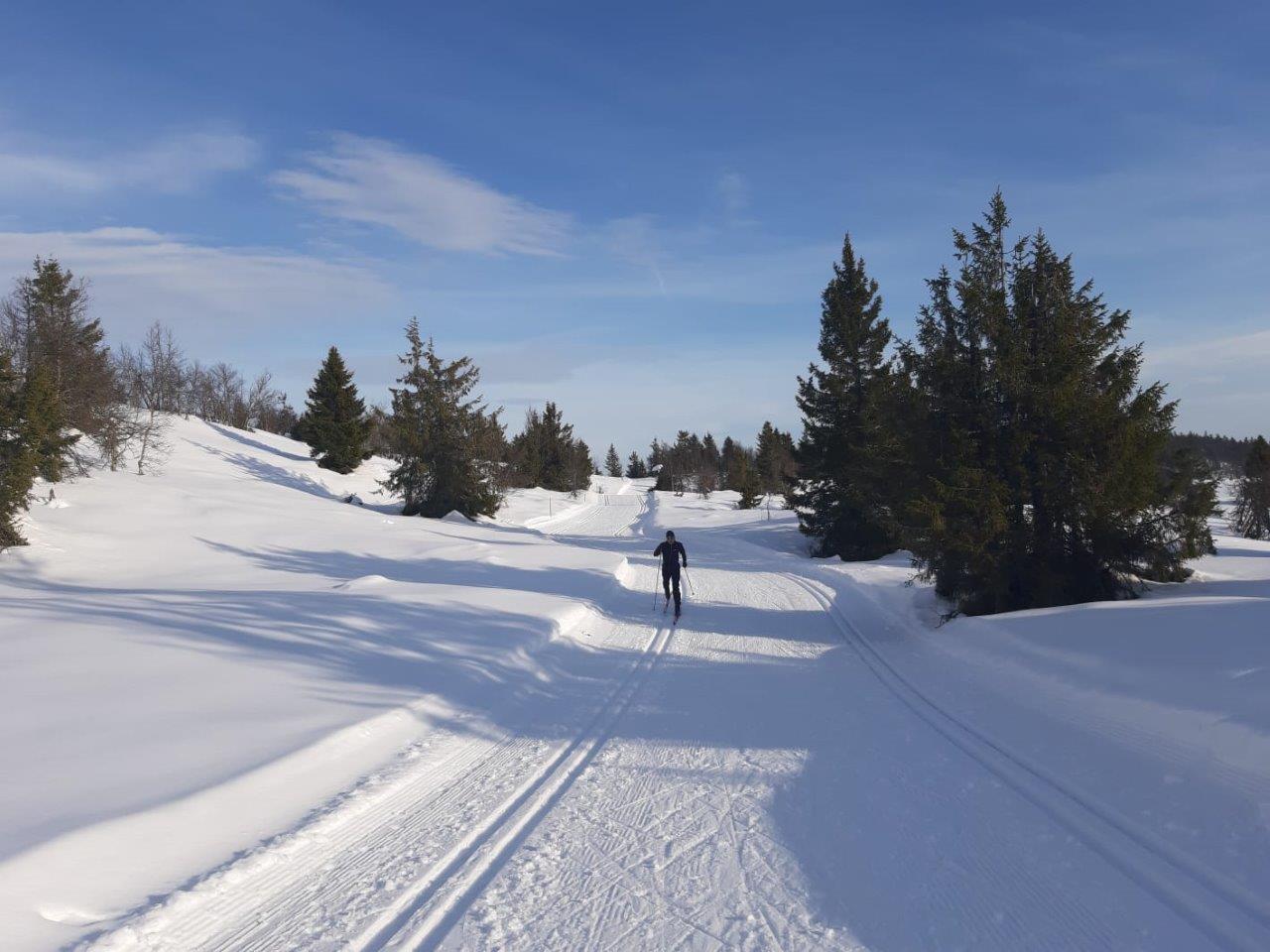 Unterwegs auf den endlosen Loipen von Sjusjoen